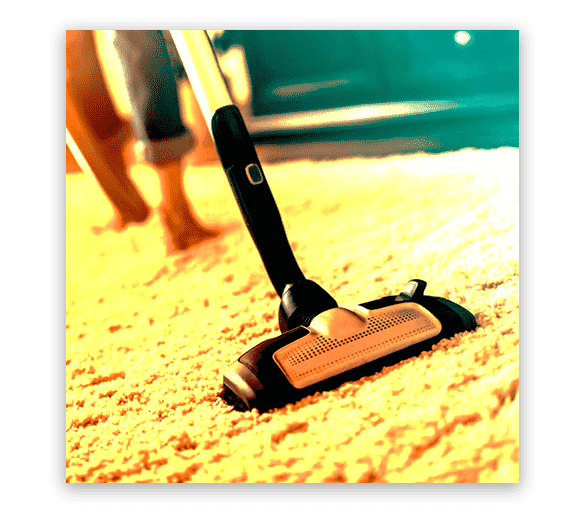 Professional Carpet Cleaning Largs North